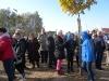 grzybobra-drzewa-dzwirzynoi2015-1256