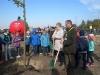 grzybobra-drzewa-dzwirzynoi2015-1287